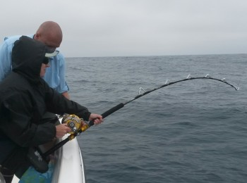 Janet hooked into yellowfin